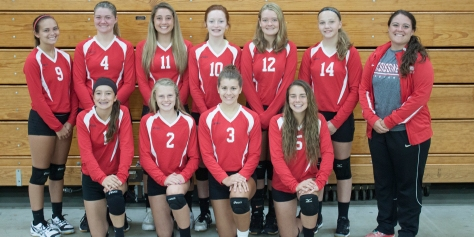 2016_volleyballjv